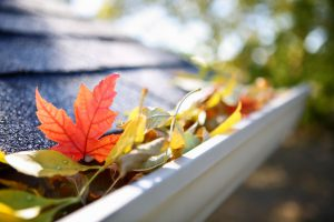 Good Property Managers Clean Out Gutters in Fall