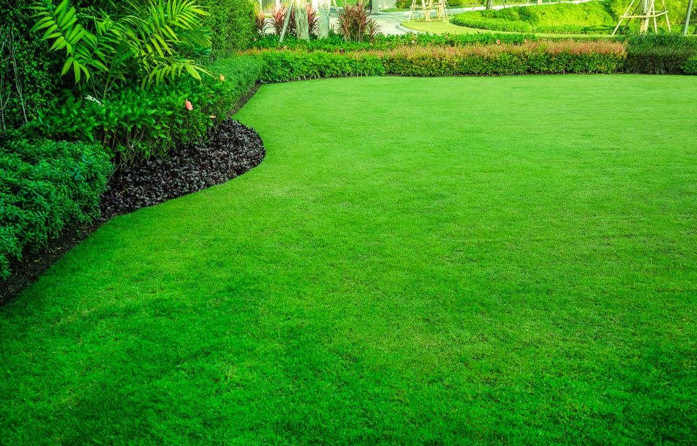 5-spring-lawn-care-tips-for-landlords