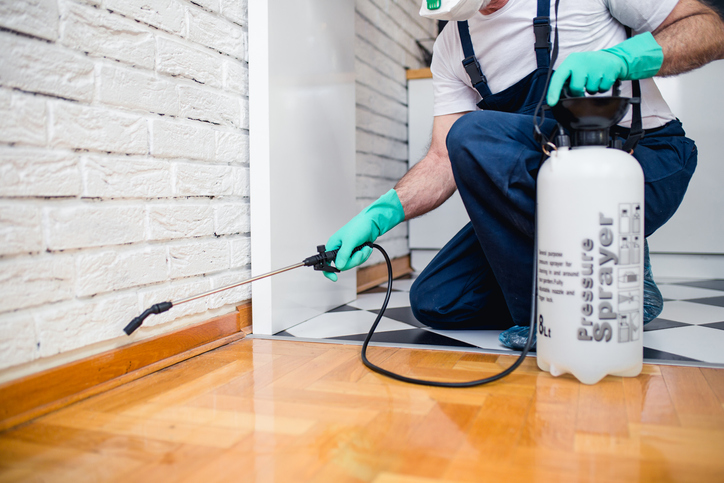 professional exterminators performing rental property maintenance in Dallas